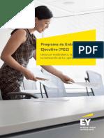 EY Programa Entrenamiento Ejecutivo Pee