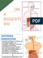SISTEMA  DIGESTIVO  DERECHO[1].pptx