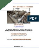 218536817-PROYECTO-CRIA-Y-ENGORDA-DE-BORREGOS.docx