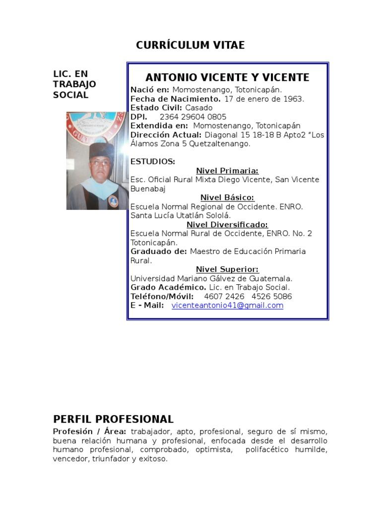 Lujoso Perfil Profesional Currículum Maestro Componente - Ejemplo De ...