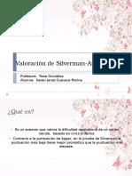 Valoracion Silverman