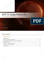 BGP-in-Large-Networks.pdf