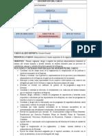 DESCRIPCIÓN DEL CARGO ( perfil).docx