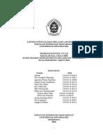 21112016 Laporan PBL Kel Sendangmulyo.doc