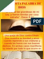 12. La Bendita Palabra de Dios