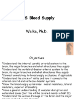 Welke.cns Blood Supply.112