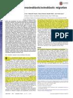 Nck Influences Preosteoblasticosteoblastic Migration