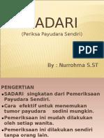Power Point Sadari