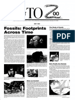 Fossils - Footprints Across Time 1984