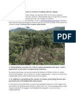 Protecting Tropical Forests is Critical to Tackling Climate Change