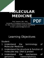 IT 3 - Molecular Biology Overview YON