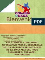 LAS COMUNAS COMO MEDIO ALTERNATIVO PARA EL DESARROLLO DE LOS PEQUEÑOS PRODUCTORES DE LA ZONA ALTA DEL NUDE SURUGUAPO, GUANARE - PORTUGUESA