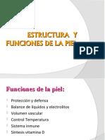 Estructura y Funciones de La Piel