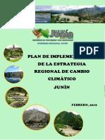 plan de implementación de estrategia regional de cambio climatico