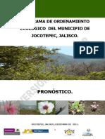 dpdspronosticojocotepec