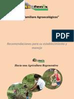 Recomendaciones para el establecimiento de Huertos Escolares.pdf