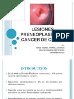 CA de Cervix CLASE 2010