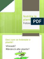 Nutritia La Plante