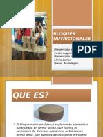 BLOQUES NUTRICIONALES.pptx