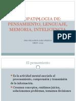 Psicopatologia de Las Funciones Nerviosas Superiores