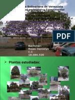 Plantas en  Plaza El Indio Hospital