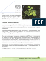 CONTROL DE INSECTOS CHUPADORES.pdf