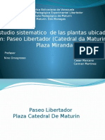 Plantas  Plaza Miranda y Catedral