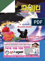 Vipula Feb2014 by TEB.pdf