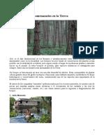 Los 7 Bosques Más Amenazados en La Tierra 2013