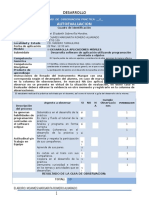 GUIAS_DE_OBSERVACION_PRACTICA 3.docx