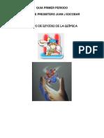 GUIA PRIMER PERIODO 10°.pdf