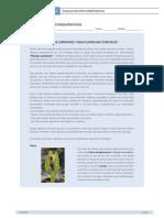 Plantas Carnivoras - Eval. por competencias.pdf