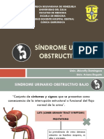 Síndrome Urinario Obstructivo Bajo 2