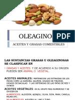 OLEAGINOSAS