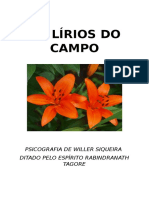 Os Lírios Do Campo