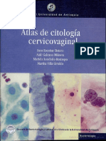 69045282-Atlas-de-citologia-cervicovaginal.pdf