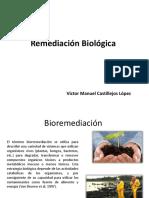 Remediación Biológica