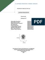 Format Laporan Ptu 2017