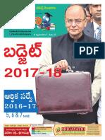Nipuna India Bud&Survey2017