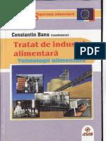 industrie alimentara Banu C.pdf