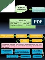 Endokrinologi Adrenalin