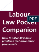 Labour Law Pocket Companion (South Africa) by R.Paterson