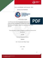 Mosqueira Chauca Christian Proteccion Frontera (2)