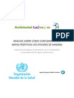 Informe Contaminacion Ataudes Madera
