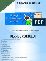 Curs 20 Infectiile Tractului Urinar Final