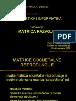 Matrice-razvoja-7