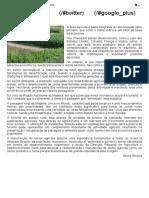 A Agricultura - A Sua Importância No Desenvolvimento Sustentável