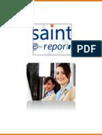 Manualreport.pdf