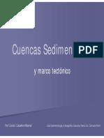 65CuencasSedimentarias.pdf