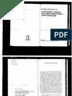 274149059-Filosofia-del-Derecho.pdf